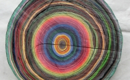 Scheibe vom bunten Baum(Ⅲ-1)/Annual rings/나이테 ∅40cmx6cm 2014-16